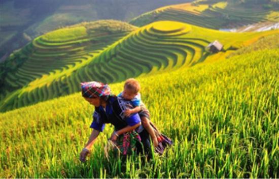 Esencia del norte de Vietnam 8 días cover