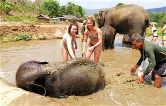 Viaje especial a Vietnam y Tailandia - 17 días